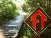 20130902-220205.jpg