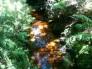 20130902-220300.jpg