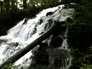 20130925-052448.jpg