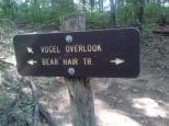 vogel_bear_overlook