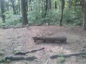 vogel_overlook_camp