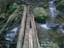 vogel_trailstream