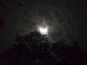 20131103-170810.jpg