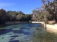 Salt Springs Recreation Area in the Ocala National Forest @ Salt Springs, Florida