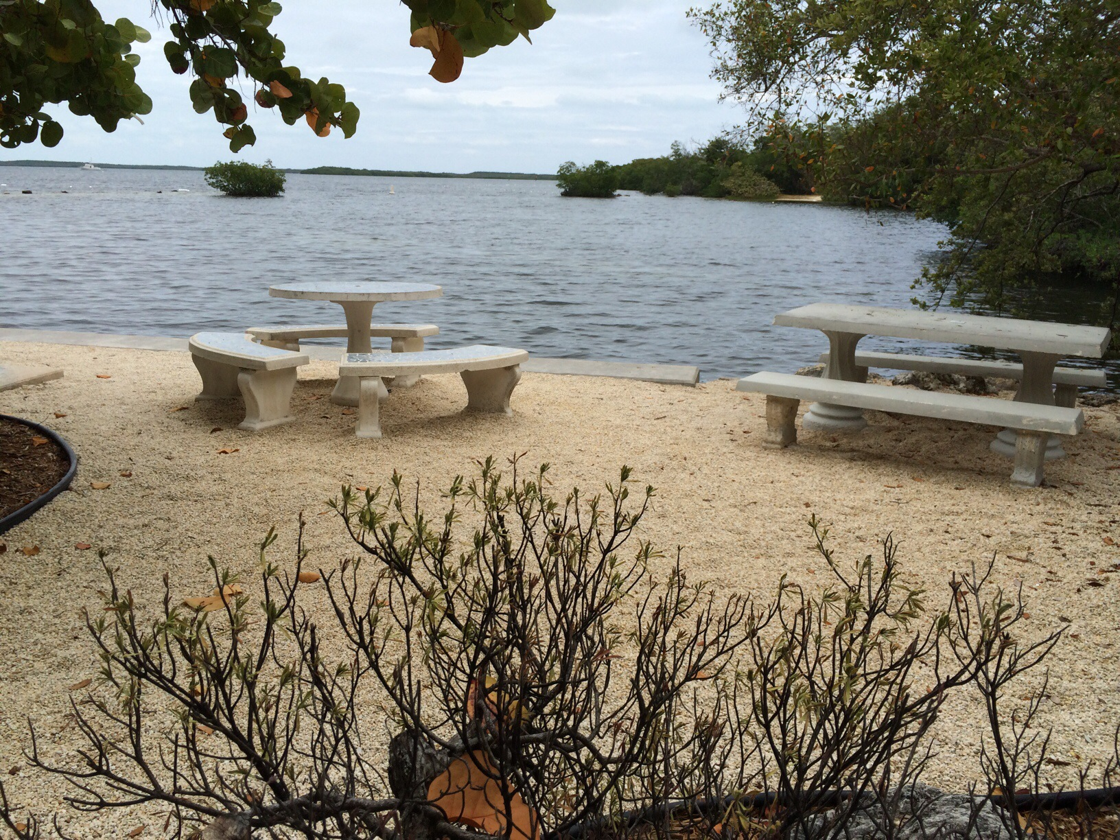 John Pennekamp State Park @ Key Largo, Florida 9.jpg