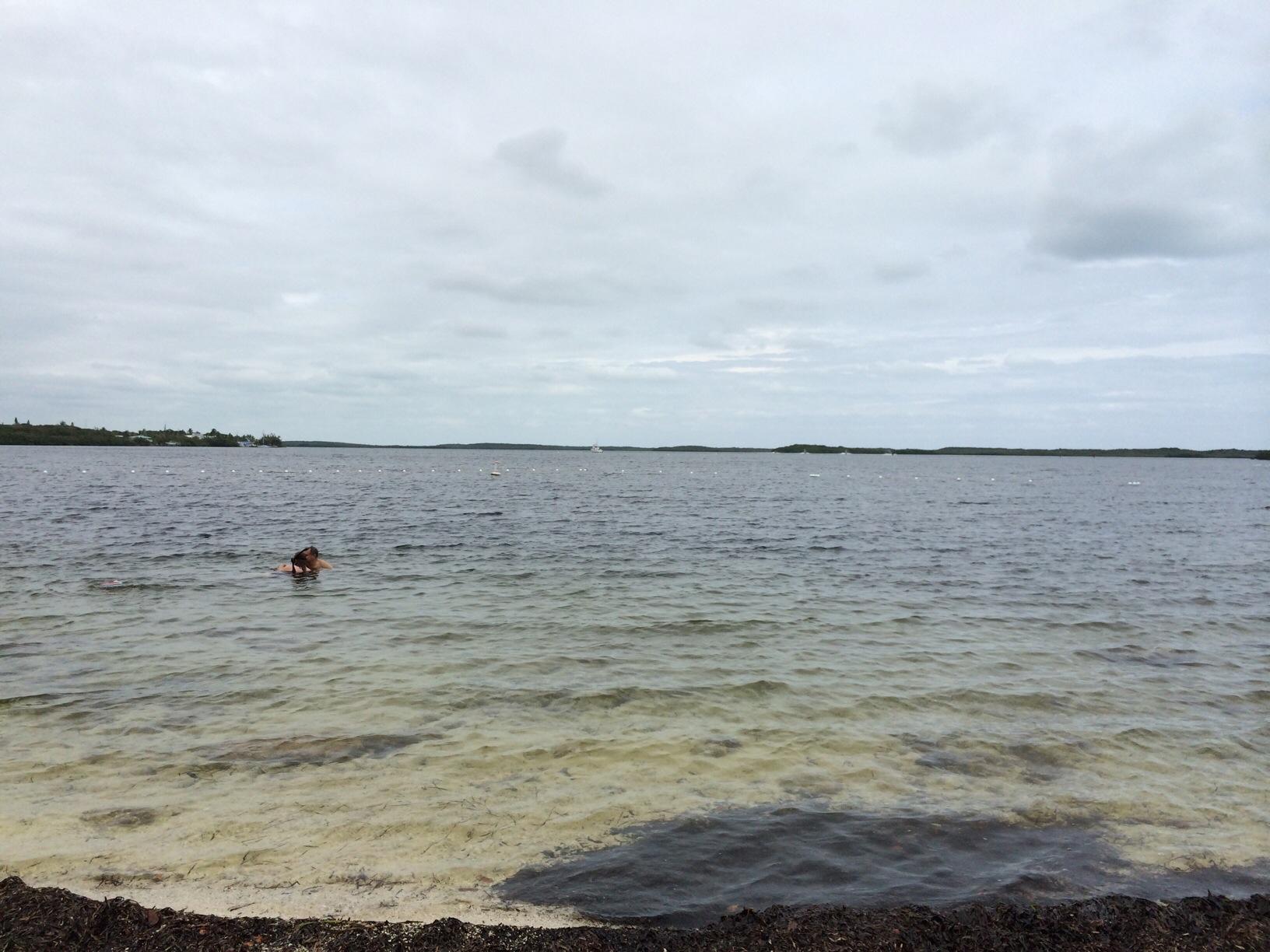 John Pennekamp State Park @ Key Largo, Florida 3.jpg