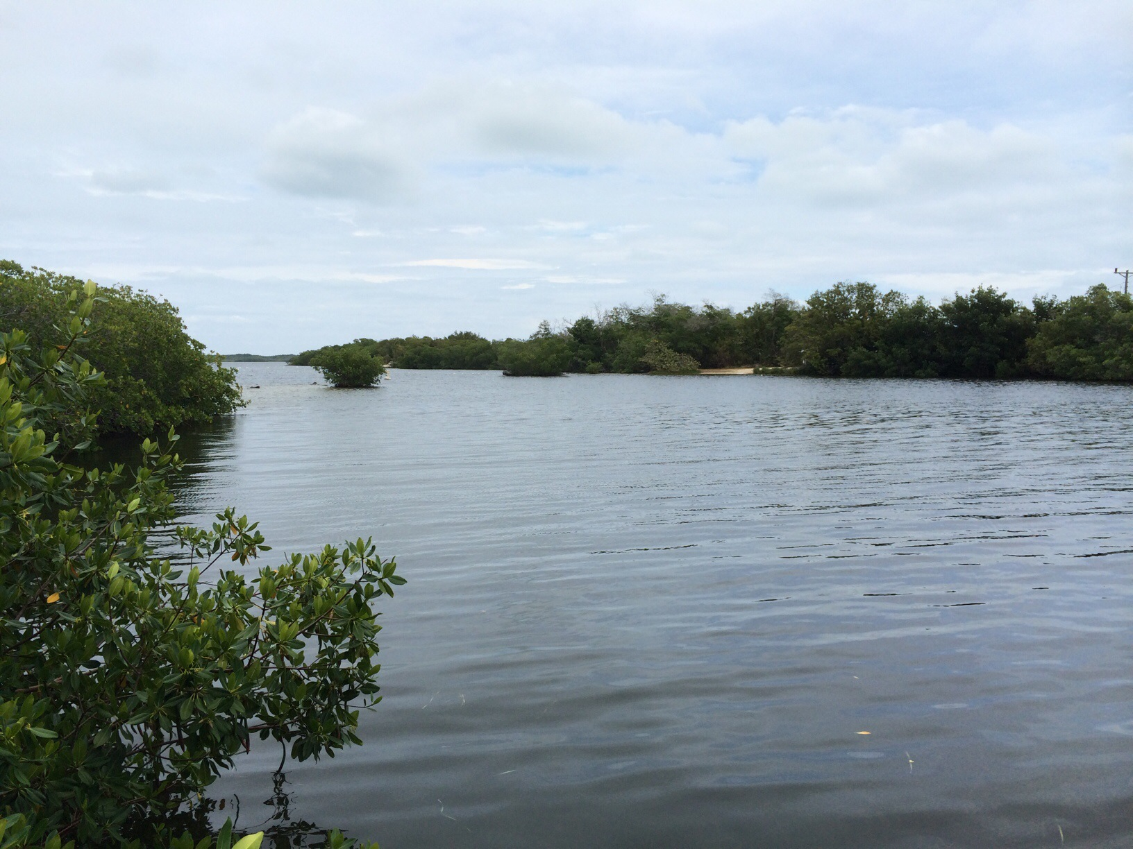 John Pennekamp State Park @ Key Largo, Florida 4.jpg
