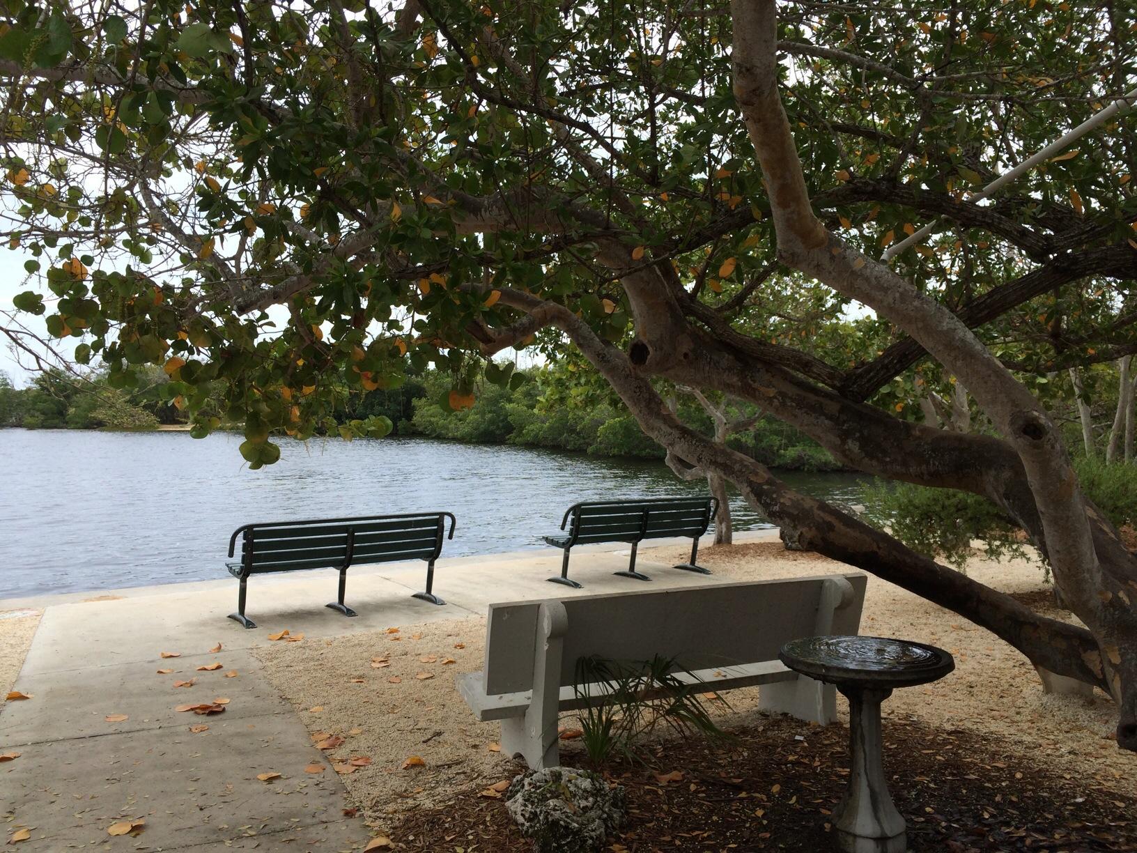 John Pennekamp State Park @ Key Largo, Florida 8.jpg