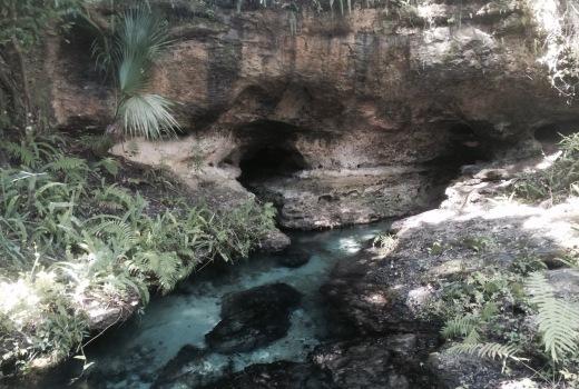 rock springs in kelly park apopka florida