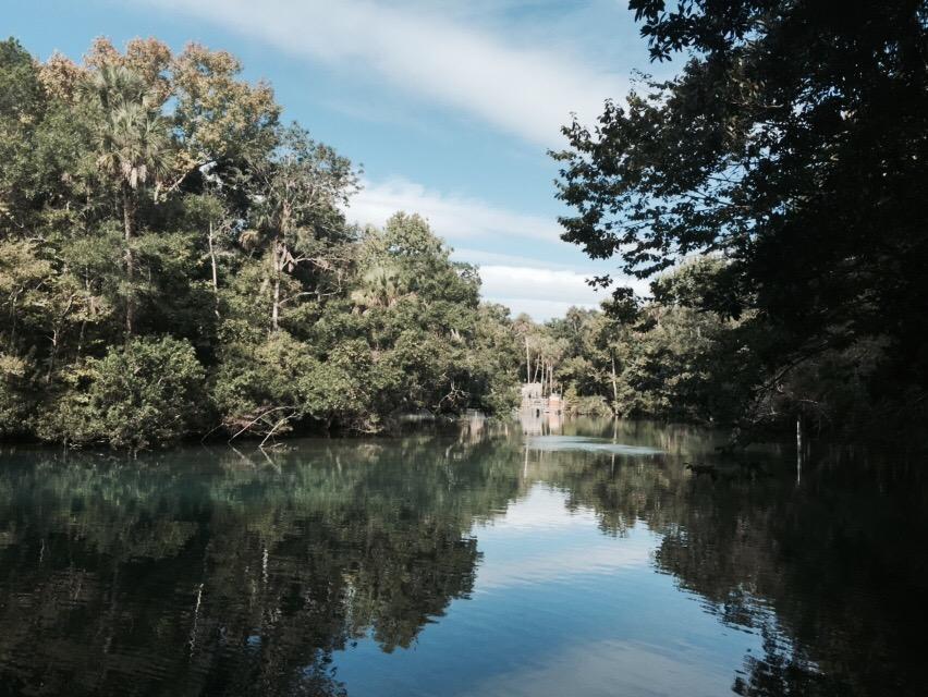 Waters of Ellie Schiller Homosassa Springs Wildlife State Park @ garzafx.com