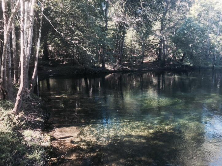 Poe Springs, IMG_0669 @ Highlands, Florida