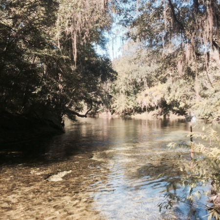 Poe Springs, IMG_0673 @ Highlands, Florida